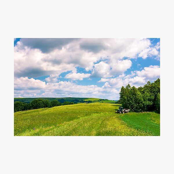 agricultural fields on hills Photographic Print