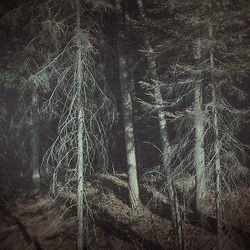 Needles by MsDunwich