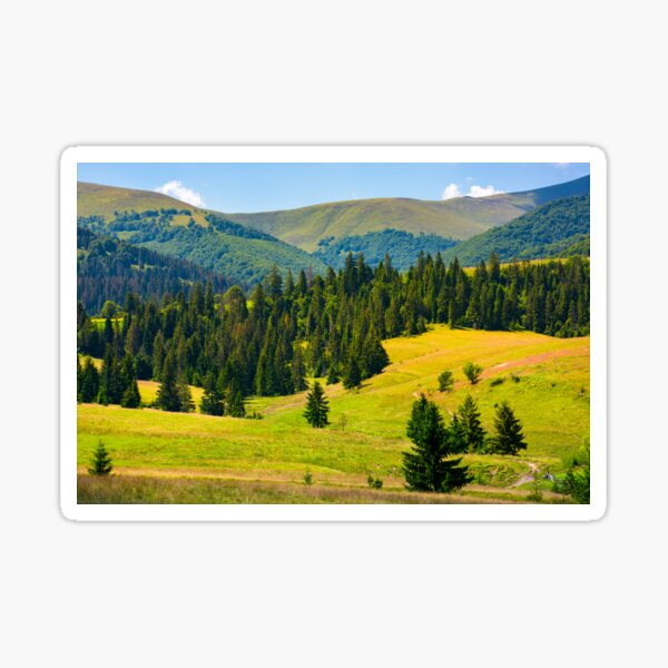 forested hills of Borzhava in summer Sticker