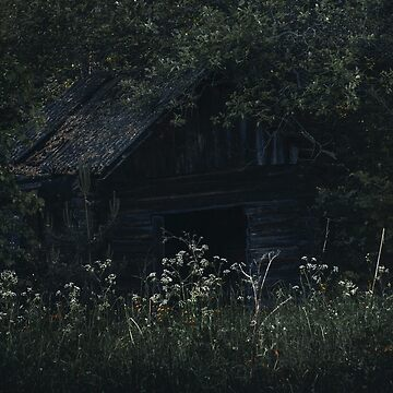 Hut X by MsDunwich