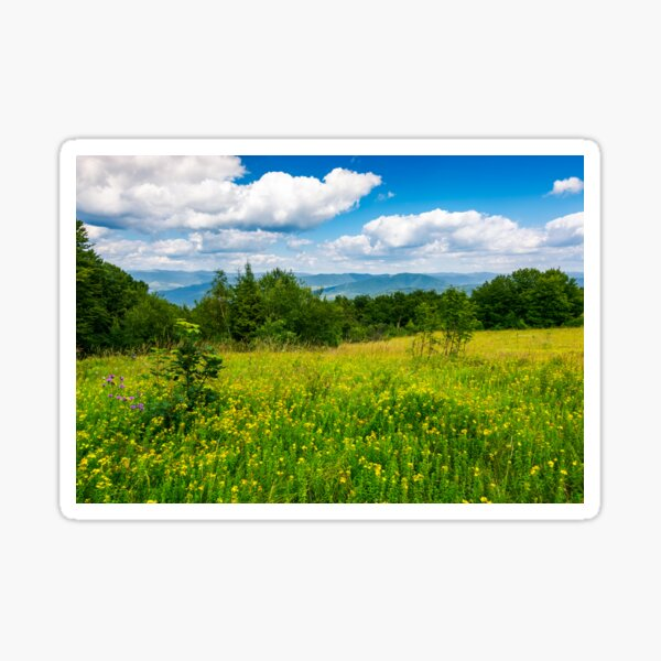 meadow with wild herbs on top of a hill in summer Sticker