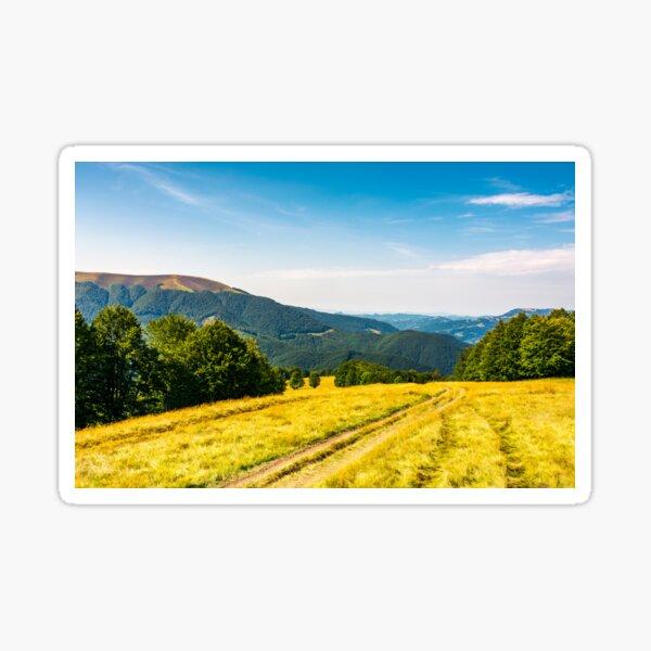 countryside road through grassy hill Sticker
