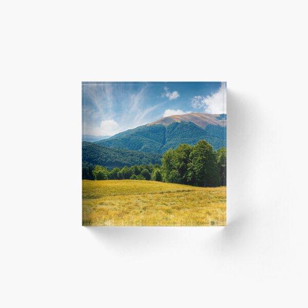beech forest at the foot of Apetska mountain Acrylic Block