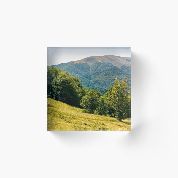 forested hills of Carpathian mountains in summer Acrylic Block