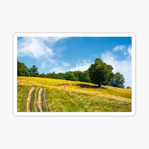 mountain road uphill along the forest Sticker