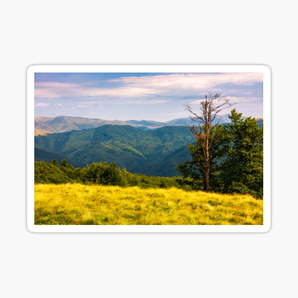 trees on a hillside with mountains in the distance Sticker