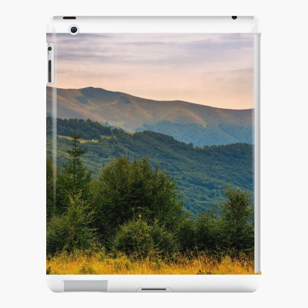 forested hills of Carpathian mountains in summer iPad Snap Case