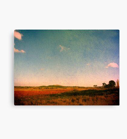 Dangars Lagoon, Northern Tablelands, NSW, Australia Canvas Print