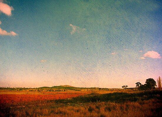 Dangars Lagoon, Northern Tablelands, NSW, Australia by Kitsmumma