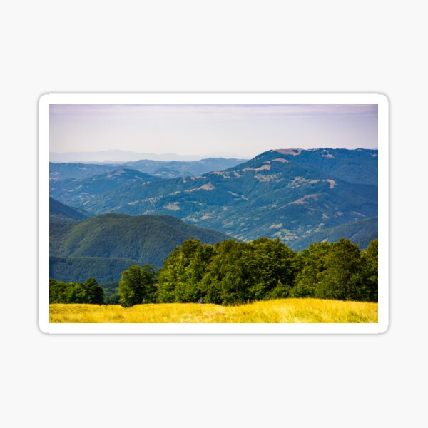 forested hills of Carpathian mountains Sticker
