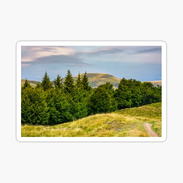 forested hills and meadows of Svydovets ridge Sticker