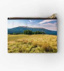 large grassy meadow of Carpathians Studio Pouch