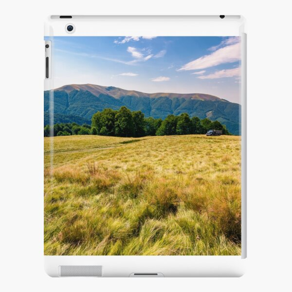 large grassy meadow of Carpathians iPad Snap Case