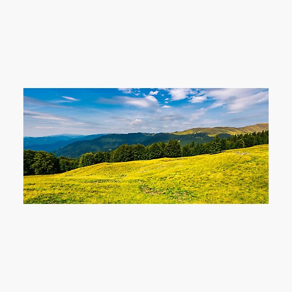 gorgeous weather over grassy slopes of Carpathians Photographic Print