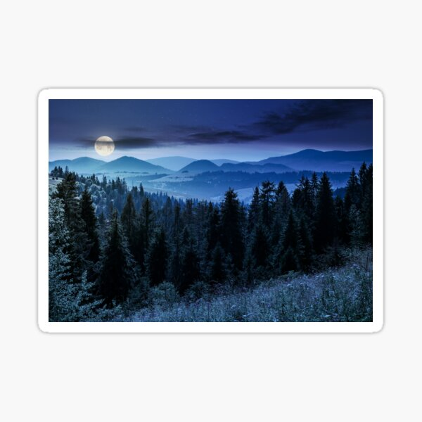 spruce forest in mountains at night Sticker