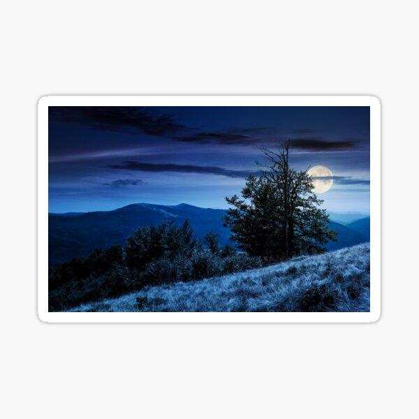 tree on the grassy hillside on at night Sticker