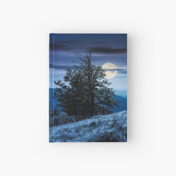 tree on the grassy hillside on at night Hardcover Journal