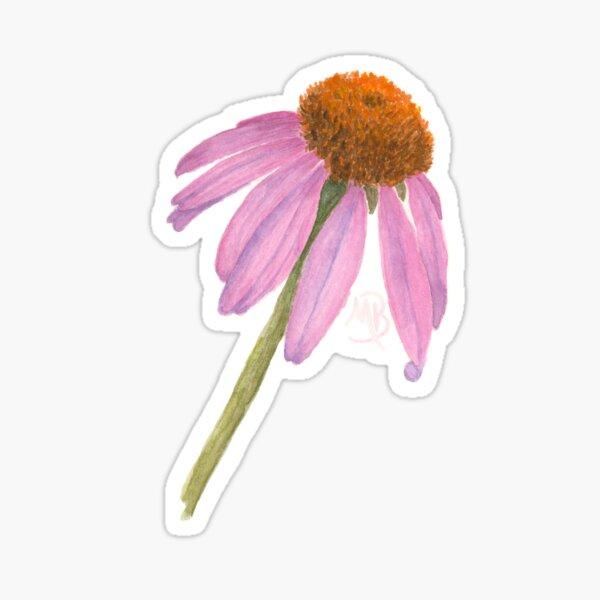 Coneflower Sticker