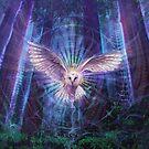 Night Owl by SimonHaiduk