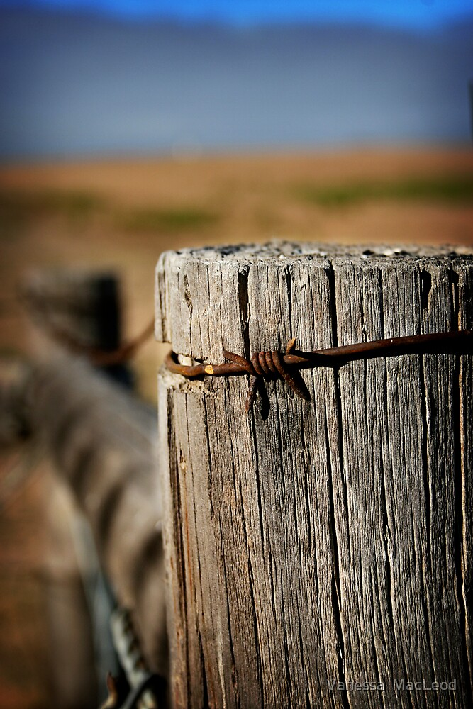 Lonely Fencepost by Vanessa  MacLeod