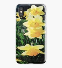 Daffodil Pillar iPhone Case