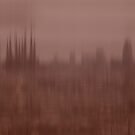 Sagrada Familia 7113 by Mario  Scattoloni