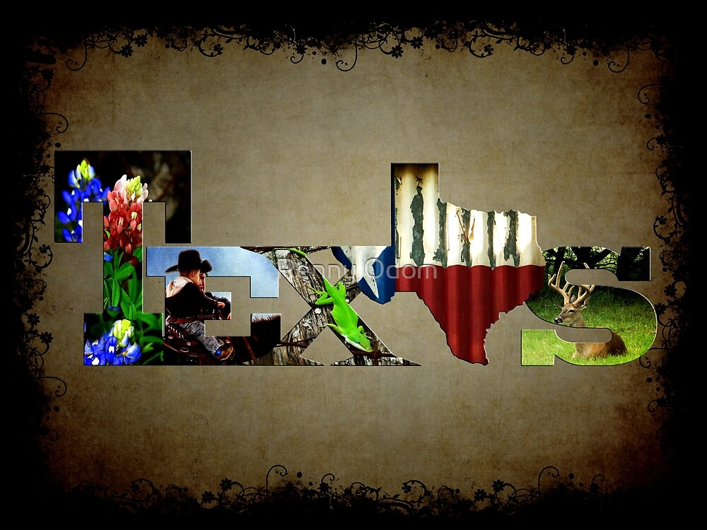 TEXAS ☆ Picture Cutout's by Penny Odom