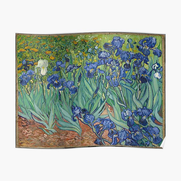 Van Gogh - Iris Póster