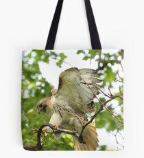 Red-tailed Hark Landing Tote Bag