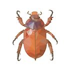 Christmas Beetle Poly by Cheryl Hodges