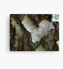 Photo wood pattern Canvas Print