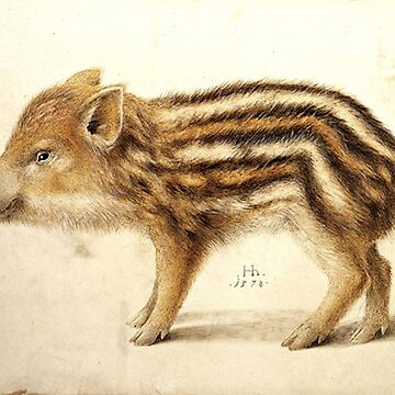 WILD BOAR PIGLET  Watercolor Animal Drawings by BulganLumini