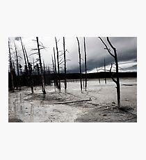 Desolate Landscape Photographic Print