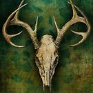 My deer... by buyart