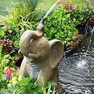 Cooling Off by Terri Chandler