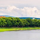 longest european linden alley in Uzhgorod panorama by mike-pellinni