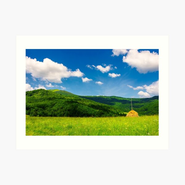 haystack on a grassy pasture in mountains Art Print