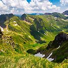 valley with snow in summer mountains by mike-pellinni