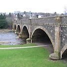 Bridge  by Dan Shiels