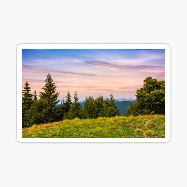 forested hills over the Brustury valley at dusk Sticker