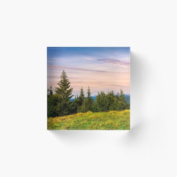 forested hills over the Brustury valley at dusk Acrylic Block