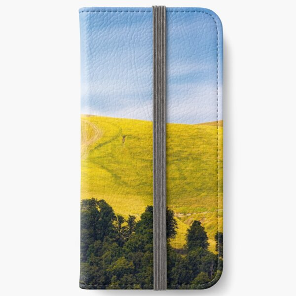 path out of birch forest to the mountains iPhone Wallet