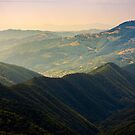 beautiful rolling hills of Carpathian mountains by mike-pellinni