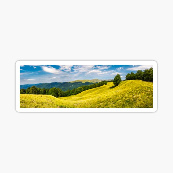 panorama with trees on the grassy hillside Sticker