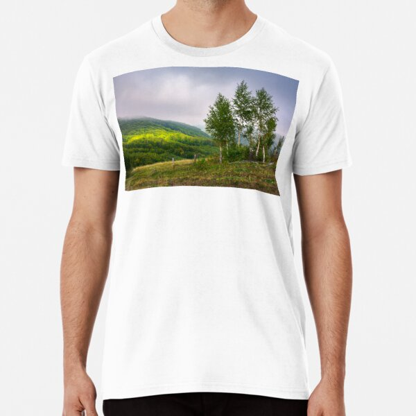 birch trees on a hillside in autumn Premium T-Shirt