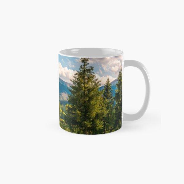 beautiful landscape in mountains Classic Mug