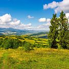 autumnal countryside of Carpathian mountains by mike-pellinni