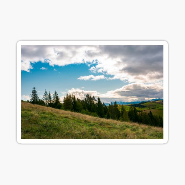forested grassy hills on a cloudy day Sticker
