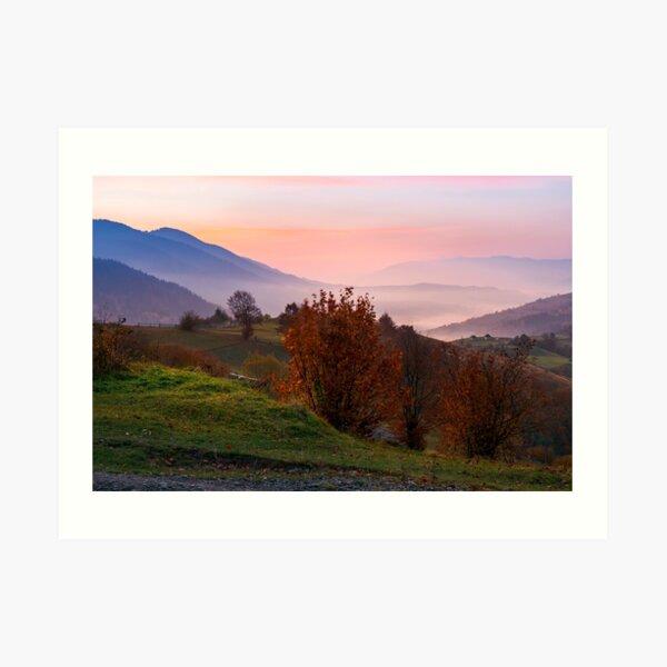 gorgeous purple dawn in mountains Art Print