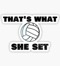"""Pegatina Trending Volleyball Pun """"Eso es lo que ella puso"""" Divertido"""